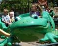 ridingfrog.jpg